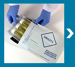 UN3373 Envelope for Stool sample transport